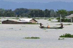 Lũ lụt nghiêm trọng ảnh hưởng tới 8 triệu dân tại Ấn Độ