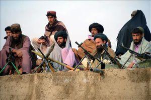 Taliban tuyên bố ngừng bắn 3 ngày trong dịp lễ Eid al-Adha