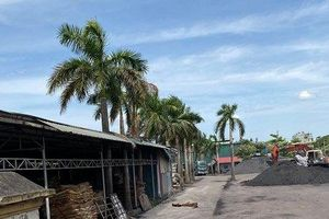 Hà Nội: Công ty Cổ phần Xuất khẩu thực phẩm cho thuê đất trái phép