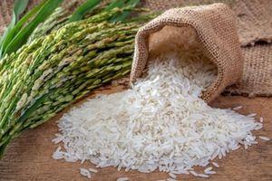 Giá lúa gạo ngày 28/07: Tăng mạnh từ 150 - 300 đồng/kg
