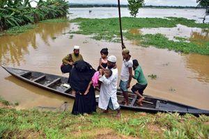 8 triệu người dân Ấn Độ chịu ảnh hưởng của lũ lụt