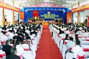 Phó Bí thư huyện ở Quảng Nam 'rớt' Ban chấp hành Đảng bộ huyện
