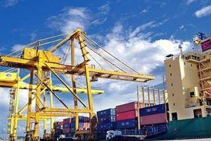 Tầm quan trọng của chuyển đổi số đối với hoạt động xuất nhập khẩu hàng hóa