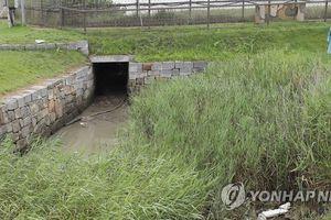 Để người Triều Tiên 'đào tẩu ngược', tướng Hàn bị bãi nhiệm