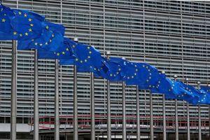 EU trừng phạt tình báo Nga, công ty TQ và Triều Tiên vì tội phạm mạng