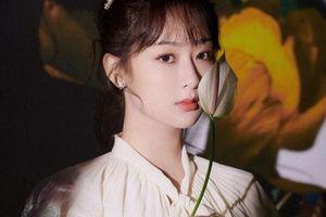 Bí mật 'cười ra nước mắt' đằng sau cảnh quay lãng mạn của Dương Tử