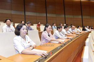 Tòa án nhân dân tối cao ban hành kế hoạch triển khai Luật Hòa giải, đối thoại tại Tòa án