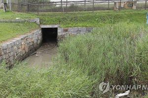 Để người trốn qua Triều Tiên, tướng hai sao Hàn Quốc mất chức