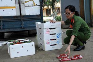 'Hô biến' dâu tây Trung Quốc thành đặc sản Đà Lạt