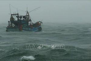 Ninh Bình, Quảng Ninh chủ động ứng phó với bão số 2