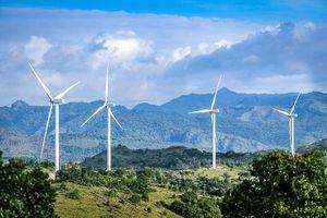 Ai đứng sau dự án điện gió 7.700 tỷ ở Đắk Lắk?
