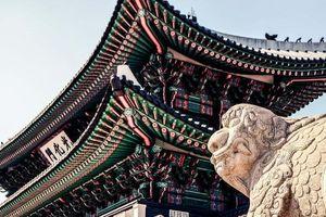 Phượng hoàng, rồng, hổ và 'thế giới động vật' trong kiến trúc cung điện Seoul