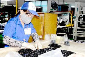 Ông Peter Wu, Hội trưởng Hiệp hội Thương mại Đài Loan tại Đồng Nai: ''Nhiều doanh nghiệp Đài Loan vẫn chọn Đồng Nai''