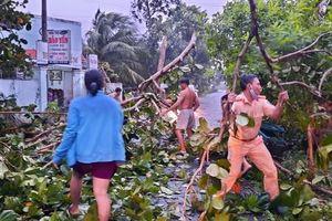 Hai CSGT dọn cây đổ giữa đường giúp dân