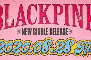 'Thả thính' single mới, BLACKPINK tiếp tục 'bắt' fan đoán mò danh tính nghệ sĩ hợp tác