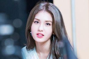 Vì sao bông hồng lai 10X của Hàn Quốc dần nhạt nhòa?