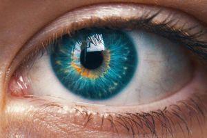Đôi mắt tiết lộ những khủng hoảng con người trải qua
