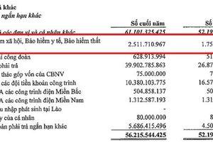 CTCP Sông Đà 11 nợ và chậm nộp BHXH cho người lao động