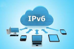 VNPT quyết tâm triển khai IPv6 phục vụ chuyển đổi số quốc gia