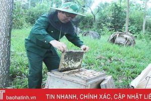 Người dân miền núi Hà Tĩnh phấn khởi vì mật ong được giá