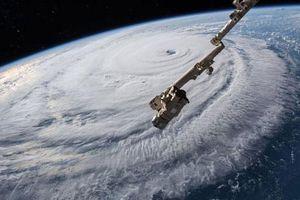 Ai là người đặt tên cho bão nhiệt đới?