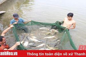 Huyện Hà Trung - dấu ấn một nhiệm kỳ