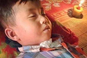 Bé trai 6 tuổi tử vong sau khi bị hàng trăm con ong bắp cày tấn công trong khi tỉa cây cùng bà ngoại