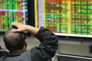 Cổ phiếu y tế 'lên ngôi' trên sàn chứng khoán