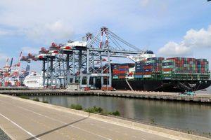 Cảng biển Việt Nam 'đội sổ' khu vực về mức giá dịch vụ bốc xếp