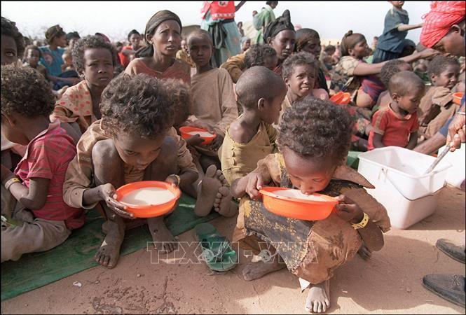 Hơn 50 triệu người vùng Sừng châu Phi có nguy cơ thiếu lương thực