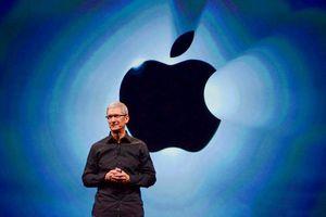 iPhone 12 hoãn ra mắt có thể là chiêu bài lão luyện của 'cáo già' Tim Cook