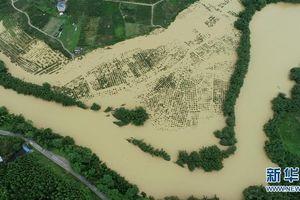 Lũ lụt ảnh hưởng hơn 38 triệu lượt người ở Trung Quốc trong tháng 7