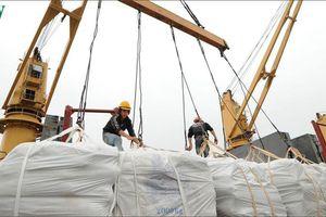Hiệp định EVFTA mở ra 'ô cửa nhỏ' cho xuất khẩu gạo vào EU