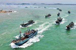 Vấp phản ứng dữ dội vì khai thác kiểu 'tận diệt', đội tàu TQ bị cấm đánh bắt ở biển quốc tế