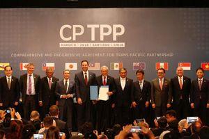 Các nước CPTPP sẽ chống chủ nghĩa bảo hộ, duy trì chuỗi cung ứng