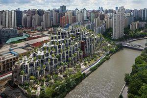 Công trình ấn tượng hình ruộng bậc thang ở Trung Quốc