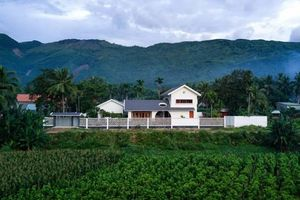 Con trai tặng bố mẹ ngôi nhà 'trăm năm không cũ' giữa đồng quê Bình Định