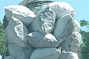 Ô tô tải chở 'cao như núi', chủ xe bị phạt, tài xế bị tước GPLX 2 tháng