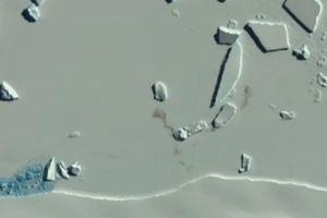 Ảnh vệ tinh tiết lộ về các 'thuộc địa' chưa từng được biết đến của chim cánh cụt