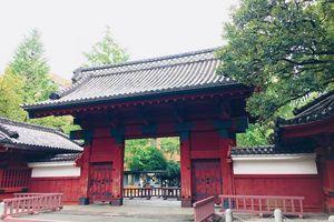Đại học Tokyo - điểm đến hấp dẫn