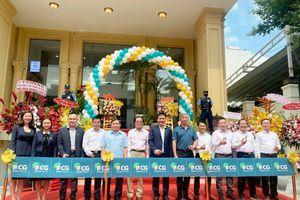 Bamboo Capital (BCG), quý II/2020 doanh thu đạt 522 tỷ đồng, tăng 11,4%