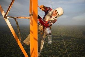 Chinh phục tòa tháp chọc trời giữa rừng Amazon