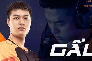 Gấu trở thành tân huấn luyện viên của Team Flash