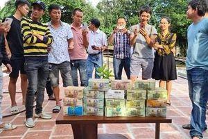 Bộ Nông nghiệp:Truyền thông tung hô lan tiền tỷ rất nguy hiểm