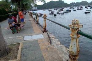 Lan can cảng cá trên đảo Cát Bà bị hư hỏng