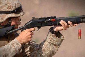 'Đập hộp' phiên bản dân dụng của dòng súng bán tự động M1014