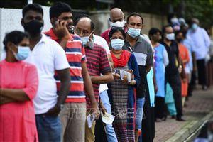 Bầu cử Quốc hội tại Sri Lanka: Đảng cầm quyền giành chiến thắng áp đảo