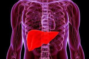 Thực phẩm ăn vào mát gan - thải độc cơ thể hiệu quả ngang uống thuốc bổ, rất nhiều người bỏ phí