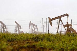 Giá dầu thô kết thúc mạch tăng 4 ngày liên tiếp, dự báo sẽ điều chỉnh giảm trong trung hạn