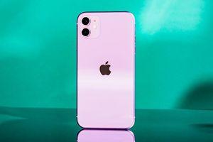 Nhiều mẫu iPhone chính hãng đang đồng loạt giảm giá tại Việt Nam